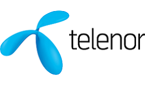 Telenor: Revolutionizing Retail Banking Services in Serbia – Digital Transformation of the Customer Experience