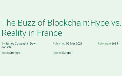 The Buzz of Blockchain: Hype vs. Reality in France