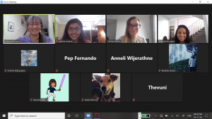 Screenshot of our meeting