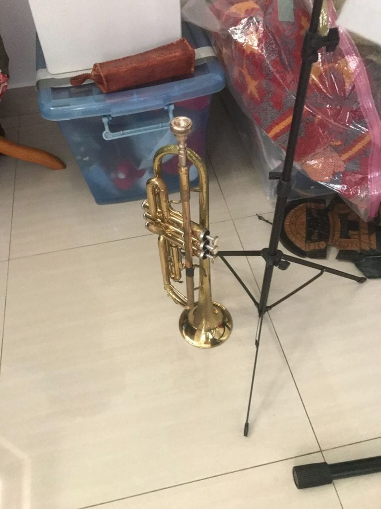Thursday 19th of November 2021- First Trumpet lesson with professional.