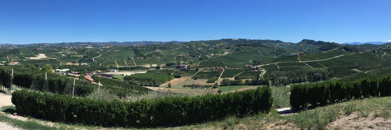 Professional Emergence and Boundary Work in the Italian Wine Industry: 'Nella botte piccola c'è il vino buono'