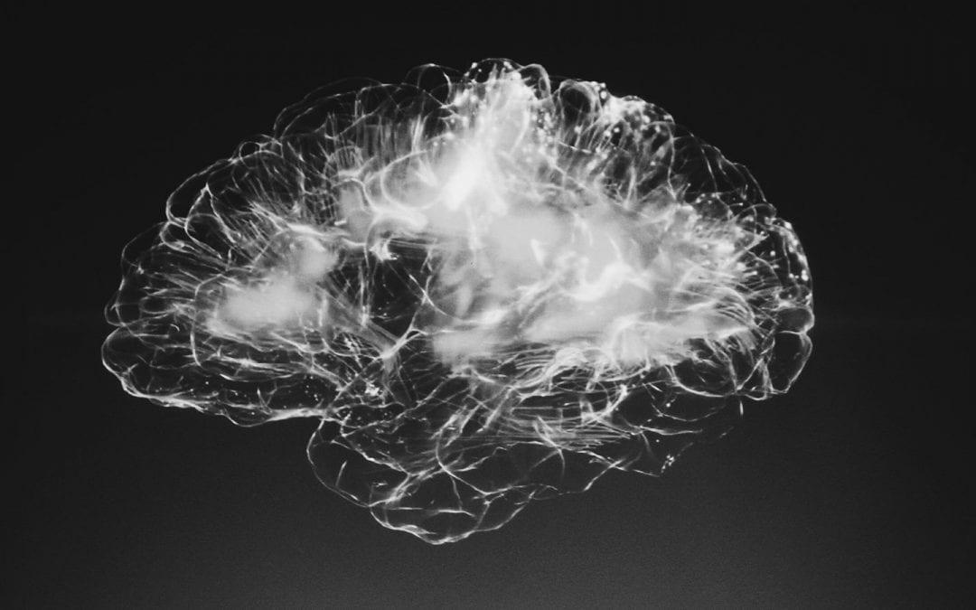 Machine & Cognition