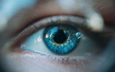 Machine & Vision