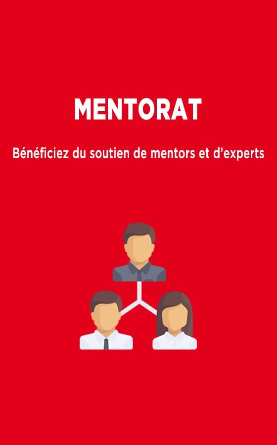 mentorat incubation