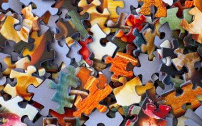 Les organisations sont des systèmes complexes – pourquoi ne pas adopter une perspective plus globale pour tenter de les comprendre ?