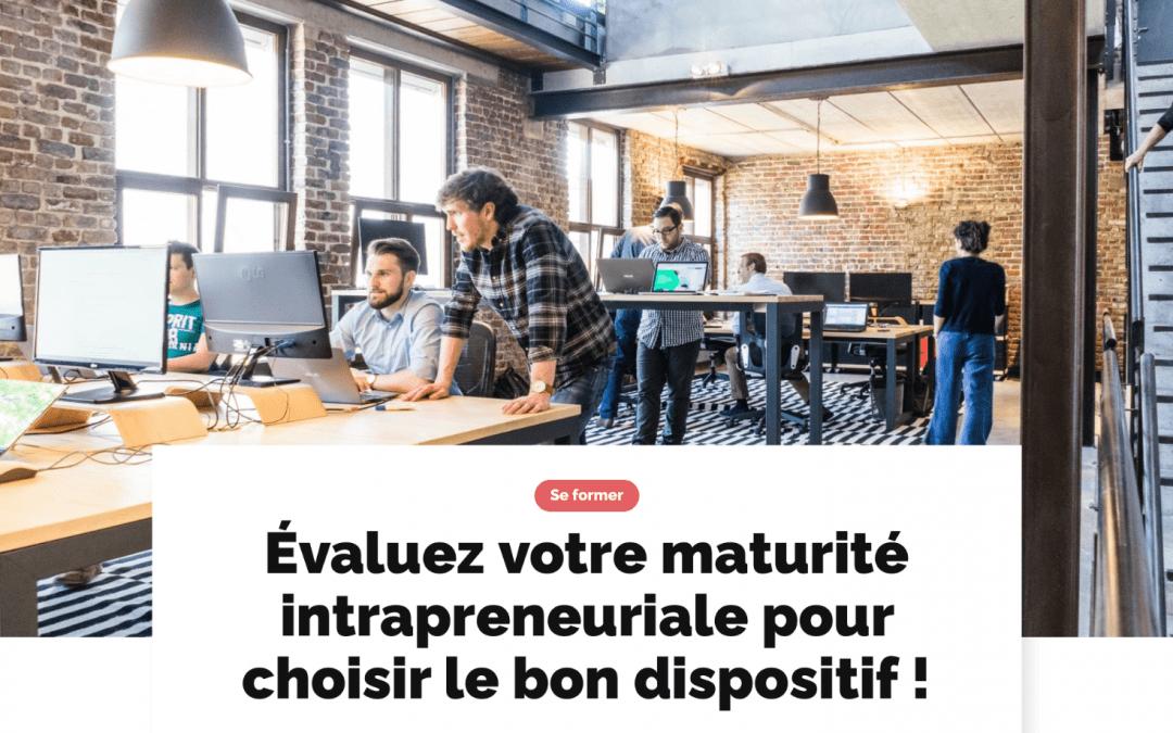 ARTICLE : Évaluez votre maturité intrapreneuriale pour choisir le bon dispositif !